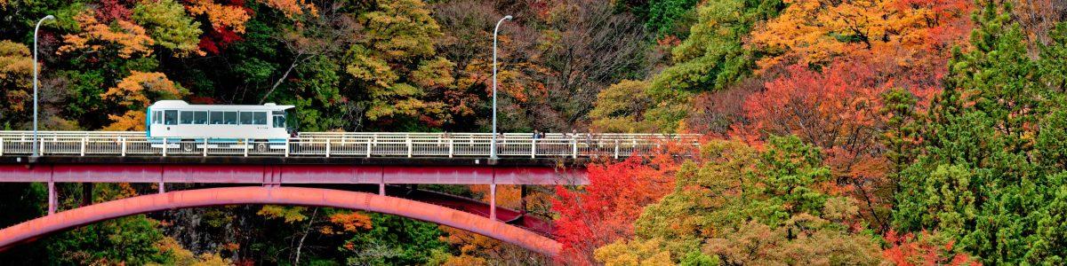Autumn  of  Tsukechi Gorge